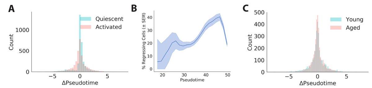 RNA velocity backwards motion.