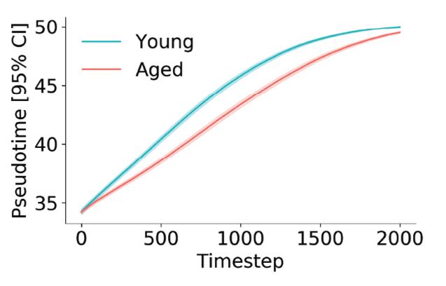 RNA velocity phase simulations.