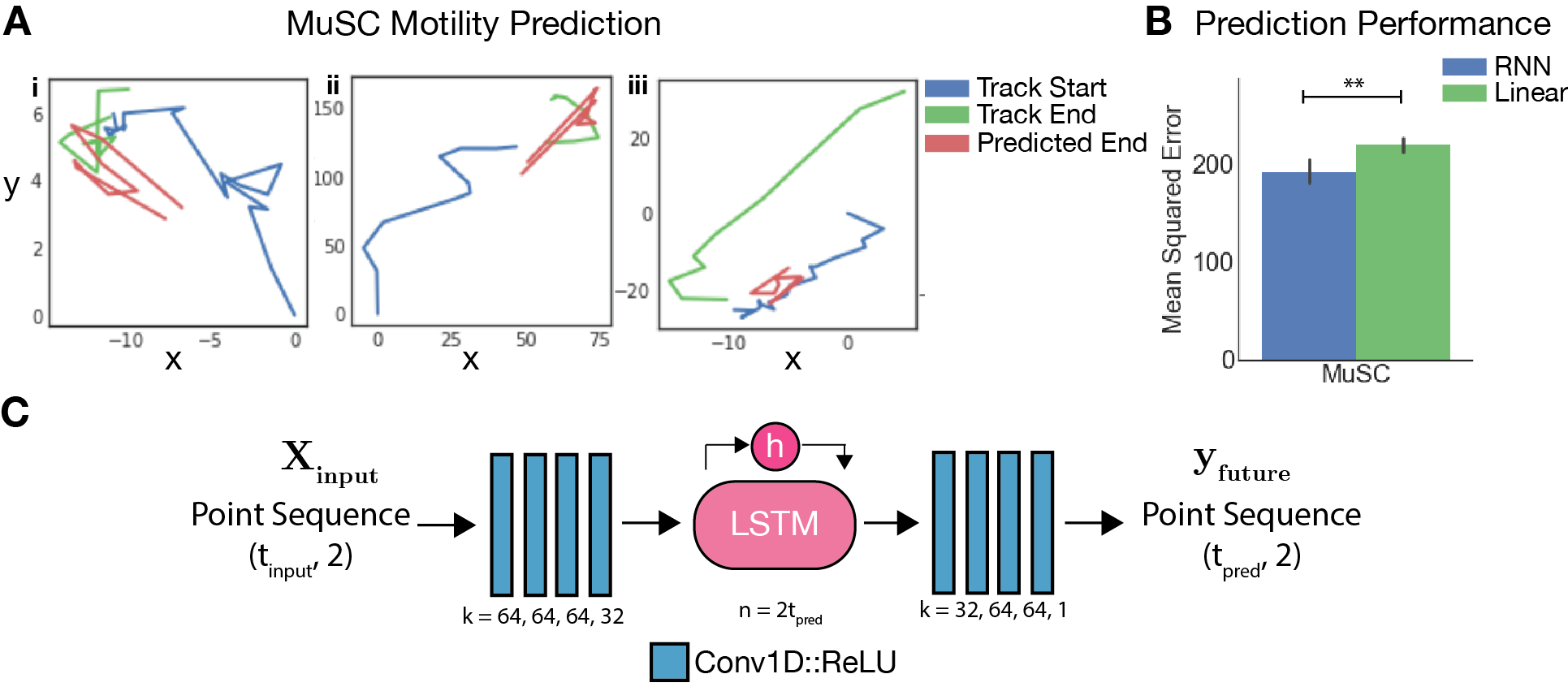 Cell motility prediction RNNs.