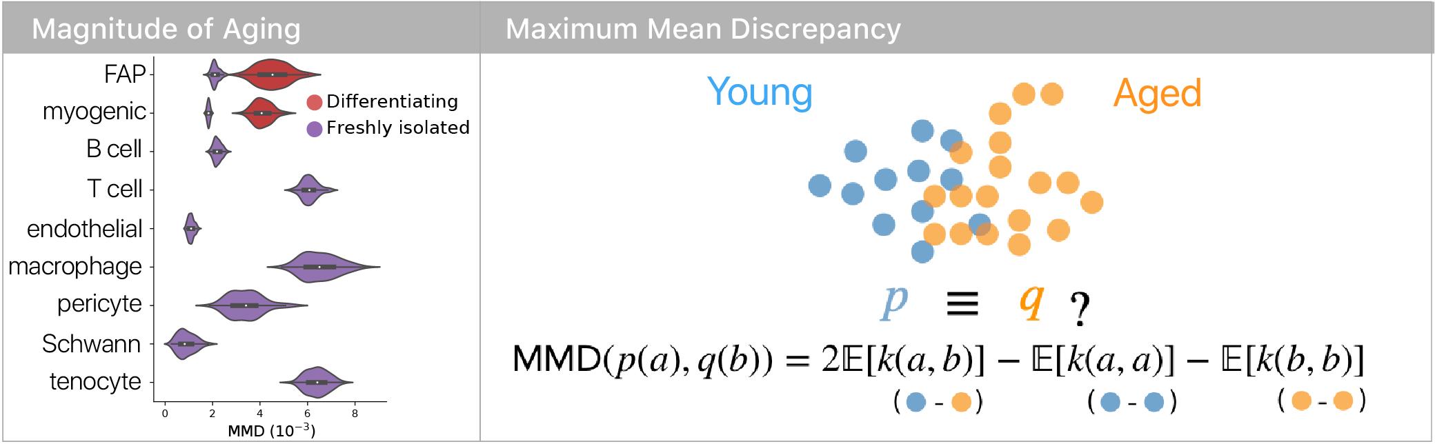 MMD comparisons