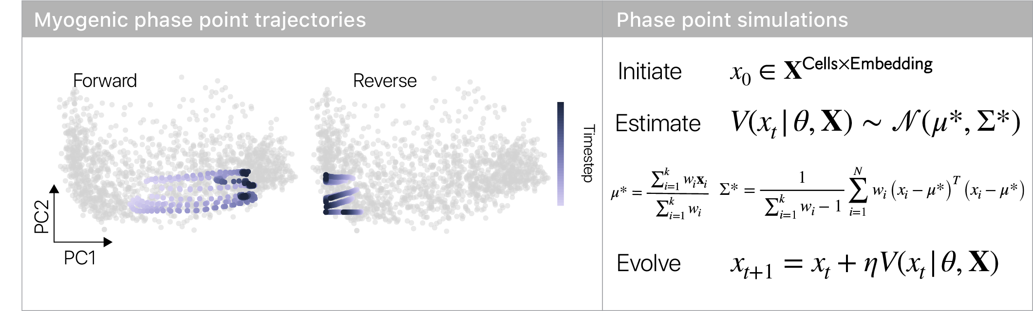 Phase simulations